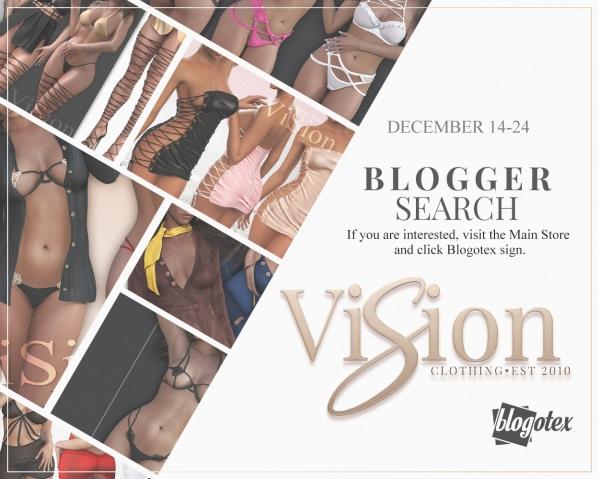 vision-blogger-poster