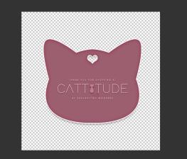 cattitude-unpacker
