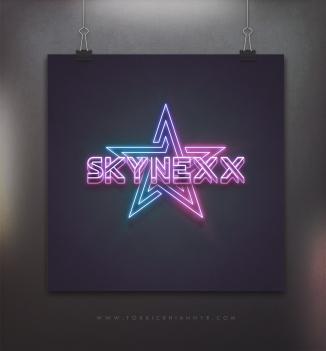 logo-skynexx