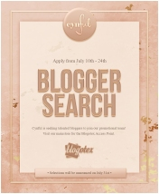 cynful-blogger-search