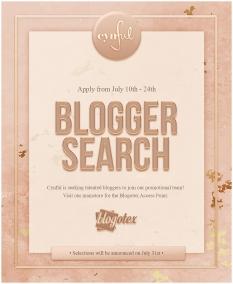 cynful-blogger-search
